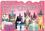 Six Kittens Foil Birthday Card