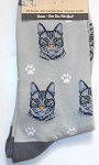 Sample, Cat Socks, Silver Tabby