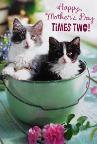 Cat Mother's Day Card, Times Two