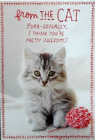 Sample, Cat Christmas Card, Awesome, From The Cat
