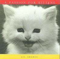 Collectible Cat Book, A Passion For Kittens