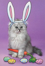 Cat Easter Card, Peter Cat-N-Tail